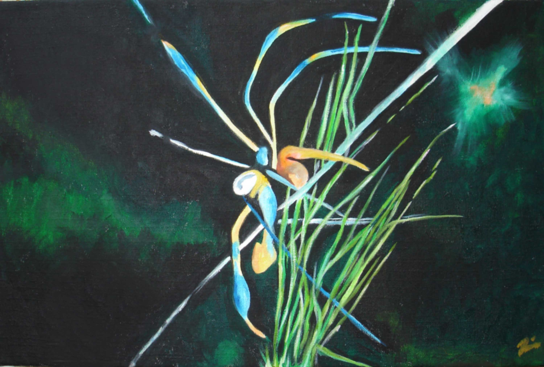 Spinne - Rima Meyendorf